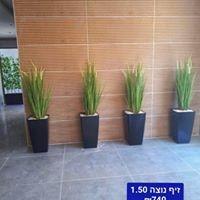 יופי בירוק - צמחיה מלאכותית ללובי 8