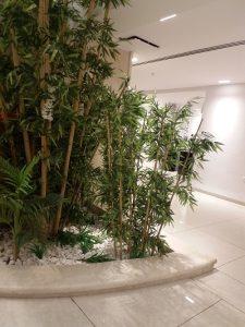 צמחיה מלאכותית 3