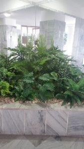 צמחיה מלאכותית 5