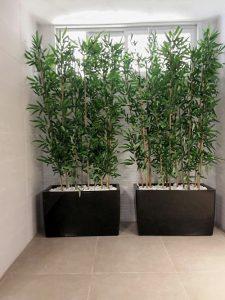 צמחיה מלאכותית 8