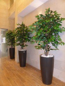 צמחיה מלאכותית 9